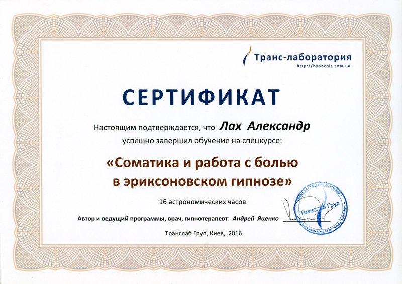Сертификат: соматика и работа с болью в эриксоновском гипнозе.